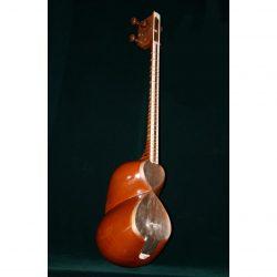 Persian Tar Musical Instrument