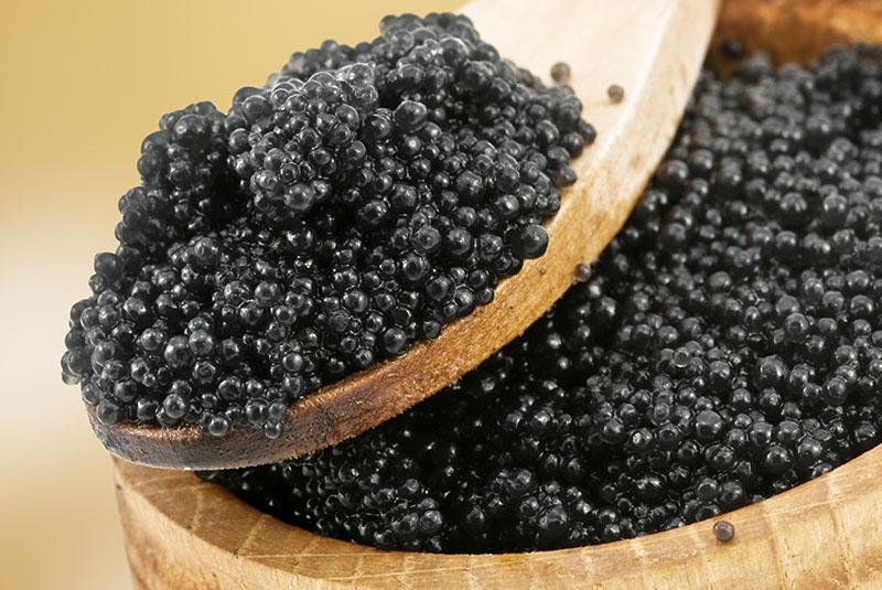 Persian (Iranian) Beluga Caviar