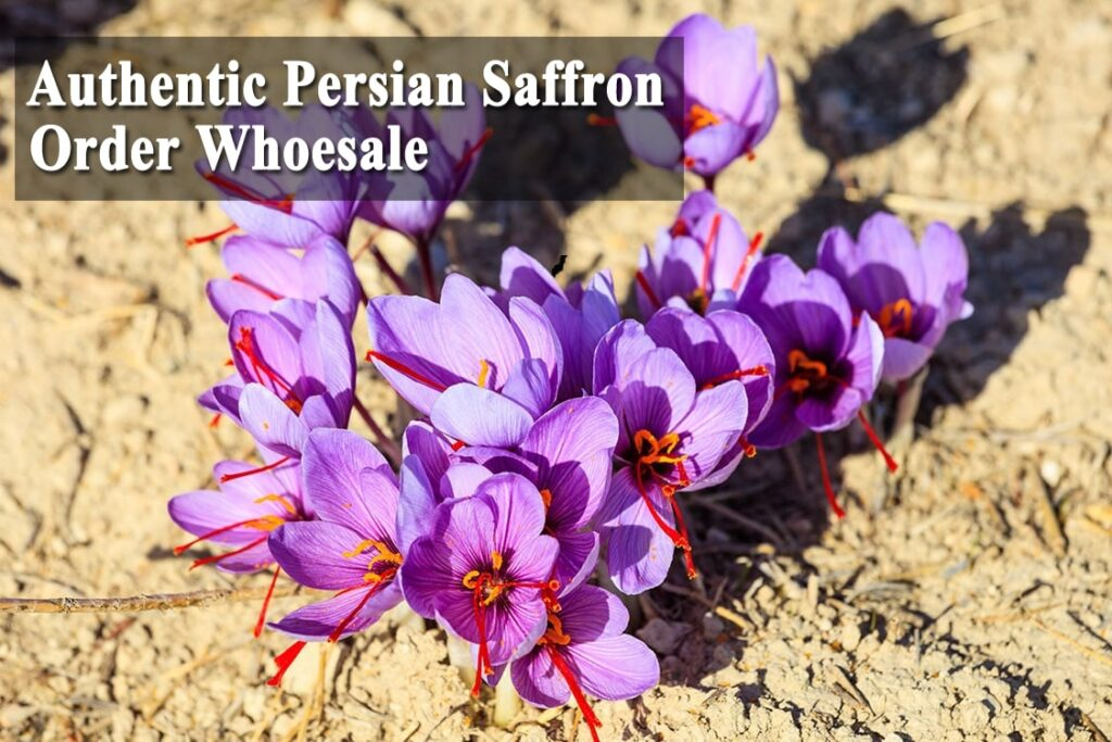 Order Whoesale Persian Saffron   ShopiPersia