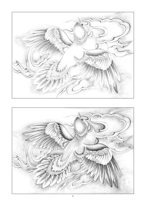 Drawing Methods of Birds in Miniature Painting