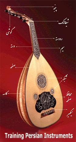 Training Persian Instruments - ShopiPersia Online Persian Music Shop