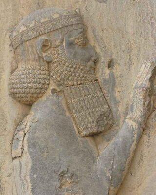 Darius the Great Persian King