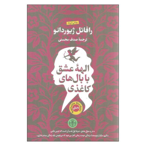 Cupid Has Cardboard Wings Book by Raphaëlle Giordano