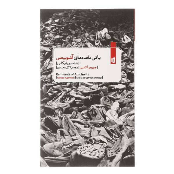 Remnants of Auschwitz Book by Giorgio Agamben